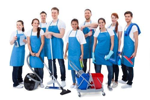 Mutirões de Limpeza do Grupo New Company